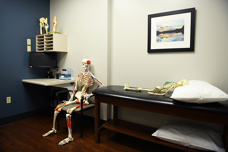 Mr Bones waiting in an exam room